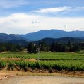 Via-Bike-Tours-Oregon-Wine-Country-Applegate-Valley1